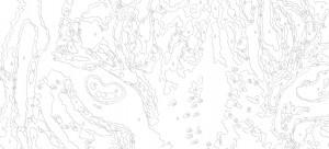 Схема из 10 цветов (средняя сложность)