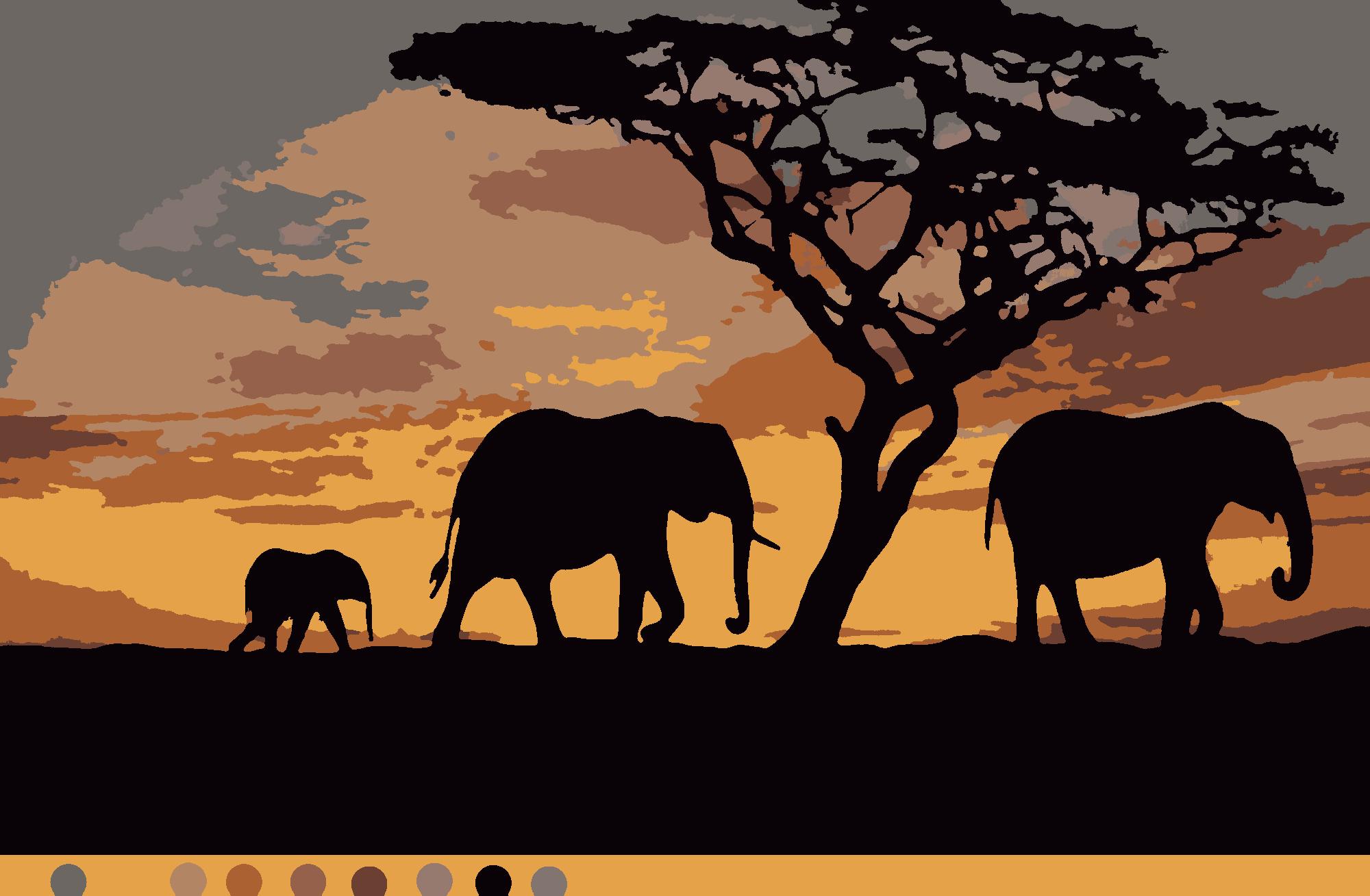 Раскраски по номерам схемы скачать бесплатно. Африка (9цв.)