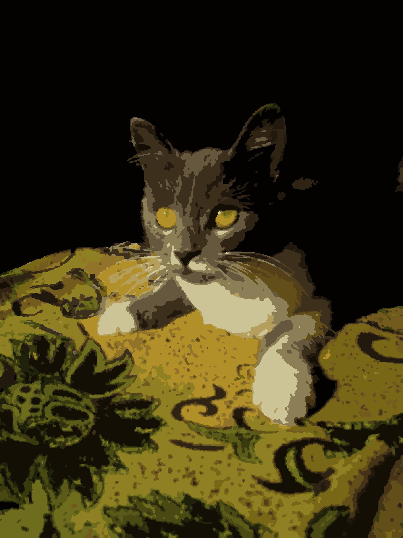 Скачать схему Кошка с узорами по номерам
